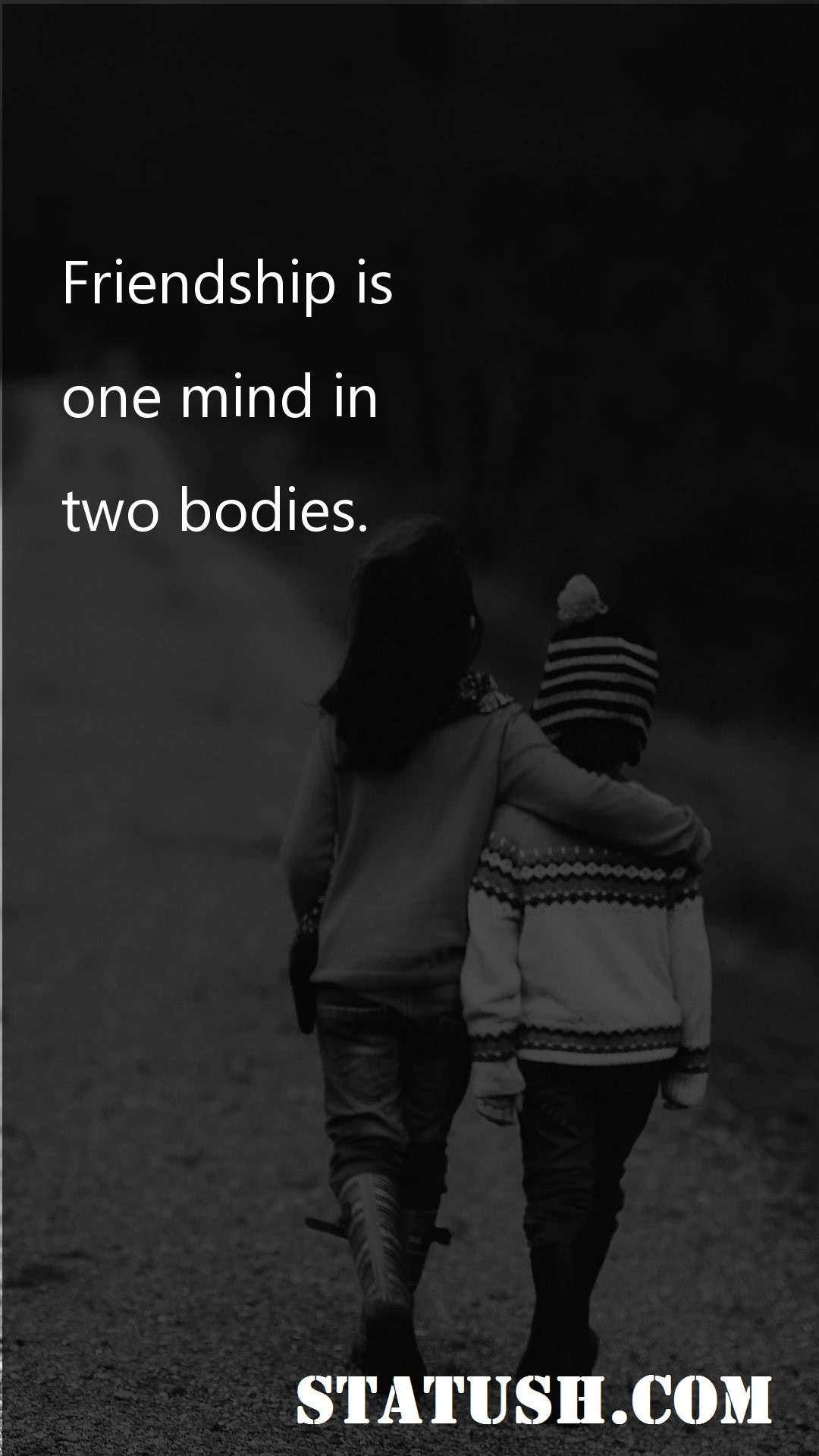 Friendship is one mind in two bodies