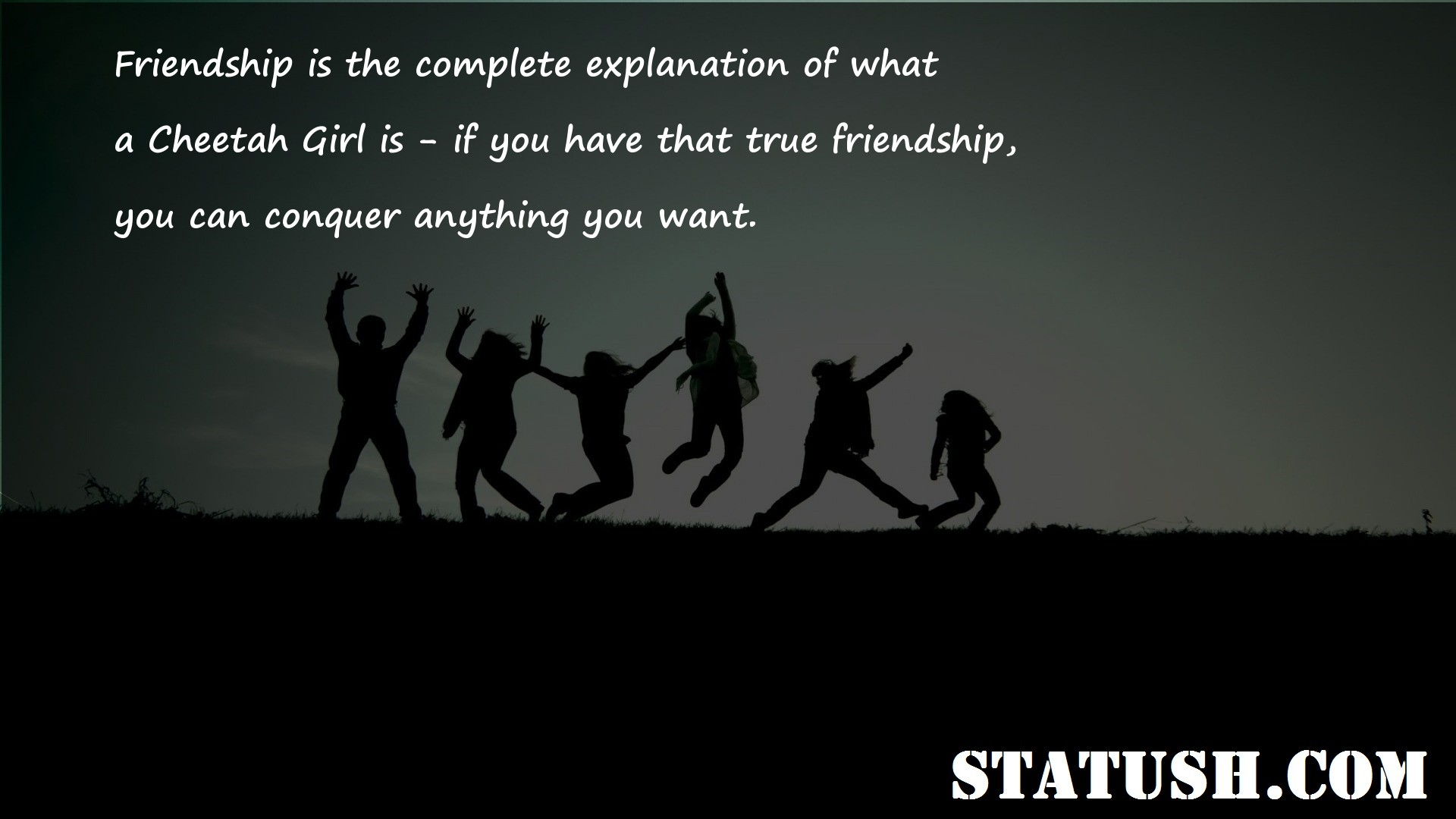 Friendship is the complete explanation of what